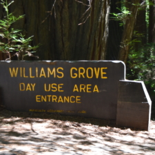 Sign to Williams Grove, former campground site - Humboldt Redwoods State Park CA