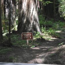 Hidden Springs trail sign -Humboldt Redwoods State Park CA