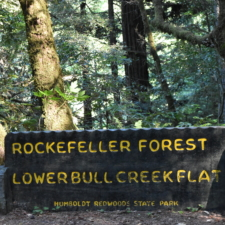 Sign to Bull Creek Flat, former campground site - Humboldt Redwoods State Park CA