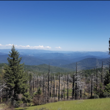 View from Grasshopper Peak - Humboldt Redwoods State Park CA