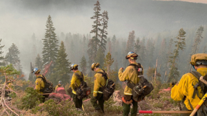 California Conservation Corps, 2021.